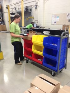 Large Cart Bins